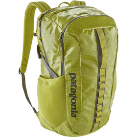 Patagonia Black Hole Pack 30l, folios green